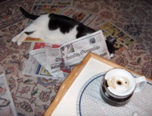 Fellini reading the paper